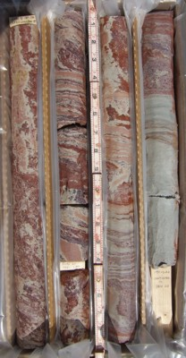 Continuous Core Samples From Elk Neck Corehole